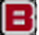 B Rank (Mini) (Shadow the Hedgehog).png