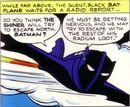 Batplane 006.jpg