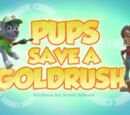 Pups Save a Goldrush's Pages