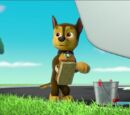 Chase/Gallery/Pups Save the PAW Patroller
