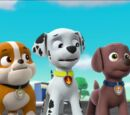Marshall/Gallery/Pups Save the PAW Patroller