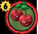 Cherry Bomb (PvZH)