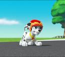 Marshall/Gallery/Pups Save Daring Danny X