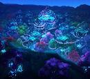 Crystalline Light Festival