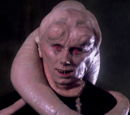 Bib Fortuna/Legendy