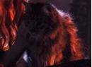 Cats-Portal.png