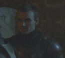Lannister guard 2