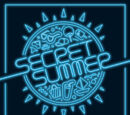 Secret (Grupo)