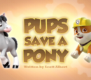 Pups Save a Pony
