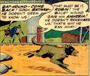 Ace the Bat-Hound Earth-One 003.jpg