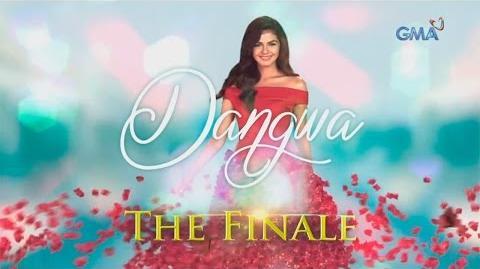 Dangwa- The final week