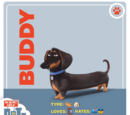 Buddy/Gallery