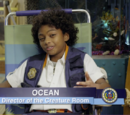 Agent Ocean