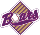 Boars Baseball Club