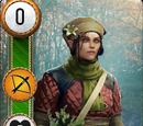Havekar Healer (gwent card)