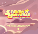 Steven's Summer Adventures