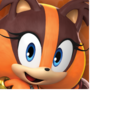 Sticks icon (Sonic Dash 2).png
