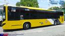 Volvo B7RLE Girl Meets World P2P Bus 2 (2).jpeg