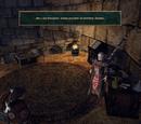 Zadanie:Znajdź pięć artefaktów Adanosa!
