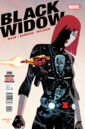 Black Widow Vol 6 6.jpg
