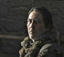 Mance Rayder's army