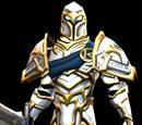 KickStarter Guardian Belt