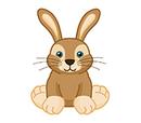 Hopping Bunny