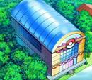 Concurso Pokémon de Santalune