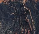 Хранитель могил (Dark Souls III)