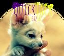 QuickJack