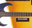 RG250 (1995–1996)
