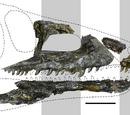 Тасманиозавр