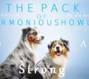 The Pack Of Harmonious Howls