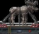Moose Transport