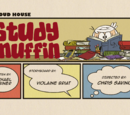 Study Muffin