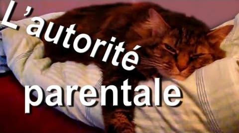 L'AUTORITÉ PARENTALE - PAROLE DE CHAT