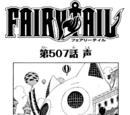 Chapter 507
