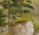 Mid Sodor Railway