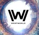 Witnessme/Westworld Season 2 Confirmed