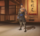 Hanzo/Skins and Weapons