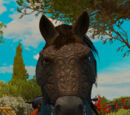 The Witcher 3 horse equipment
