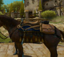 Hearts of Stone images — Horse equipment
