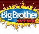 Wielki Brat 3