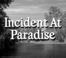 Incident at Paradise