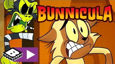 Bunnicula Monkey Business Boomerang UK