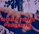 Shera Films (Pakistan)