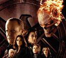 Agents of S.H.I.E.L.D. (TV Series)