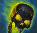 Crâne de Dolus