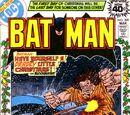 Batman Vol 1 309