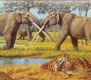 Млекопитающие миоценовой эпохи